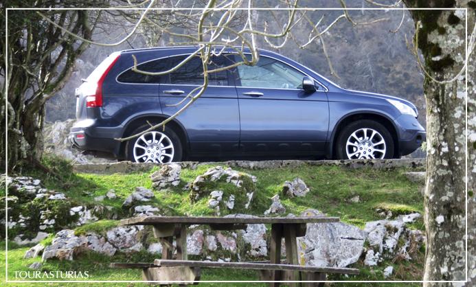 ¿Cómo son? Nuestras visitas privadas en Asturias