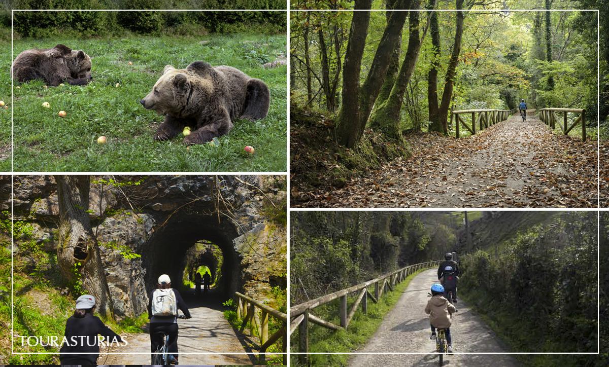 Rutas en Asturias con final gastronómico